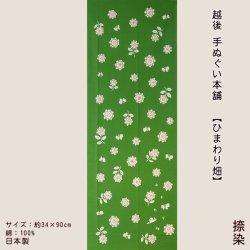 画像1: 越後手ぬぐい本舗 ひまわり畑(捺染)