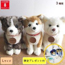 画像1: 秋田犬のぬいぐるみ全3種類  Lサイズ