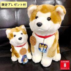 画像2: 秋田犬のぬいぐるみ全3種類  Lサイズ